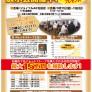 tenjikai-chirashi-20150911-1